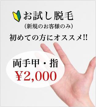 お試し脱毛(新規のお客様のみ) 両手・指2,000円